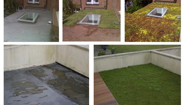 wallbarn-green-roof-examples