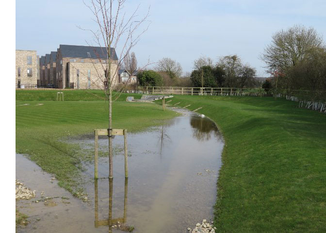 waterlogged-grass