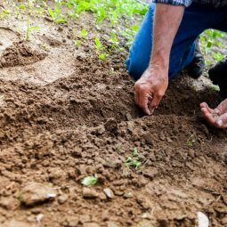 How to carry out a soil percolation test
